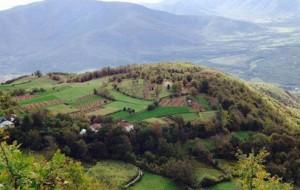 Bisedë me Fasliun e Berbatit, personazh në roman