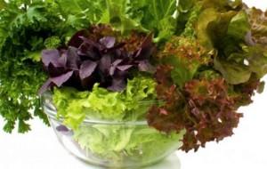 Duhet të vijë nga bimët 95% e ushqimit që konsumojmë