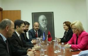 Shqipëri - Kosovë së bashku për gjuhën e kulturën shqipe në diasporë