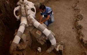 Ekspertët po studiojnë eshtrat e mamuthit 14 mijë vjeçar