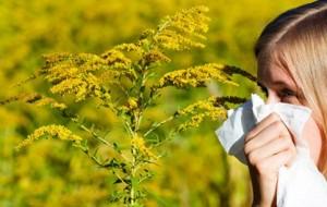 Pranvera, stina që largon dimrin, por sjell alergjitë