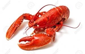 Vaji i karkalecit të kuq dhe vetitë e tij ushqyese