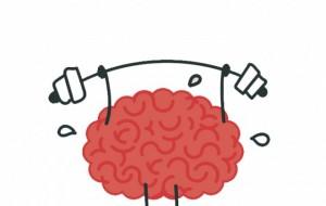 Strategjitë për të stërvitur trurin