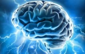 Në cilën moshë funksionon më mirë truri?