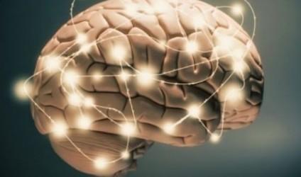 4 ushqime që përmirësojnë kujtesën tuaj