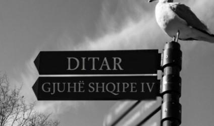 """""""Në bregun e pulëbardhave"""", gjuha shqipe IV"""