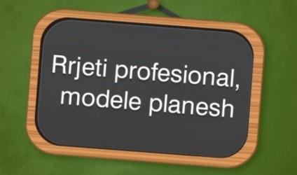 Plani vjetor i drejtuesit të rrjetit
