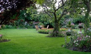 Nëpër kopshtin tim...