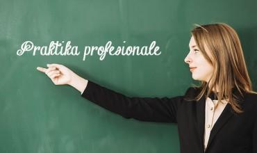 Portofoli i praktikës profesionale, profili Gjuhë shqipe dhe Letërsi