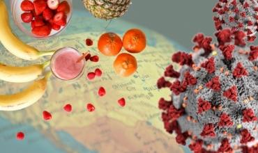 Si mund të forconi imunitetin tuaj për t'u mbrojtur nga COVID-19?