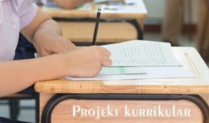 Projekt kurrikular, klasa e pestë