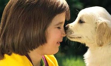 8 Arsyet pse një fëmijë duhet të ketë një kafshë