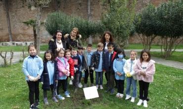 """Nxënësit e shkollës """"Mihal Ekonomi"""" në Durrës mbjellin pemën simbol të jetëgjatësisë"""